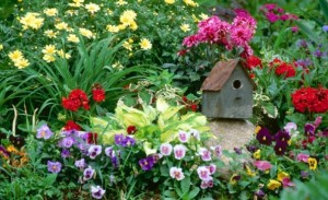 flower garden with birdhouse