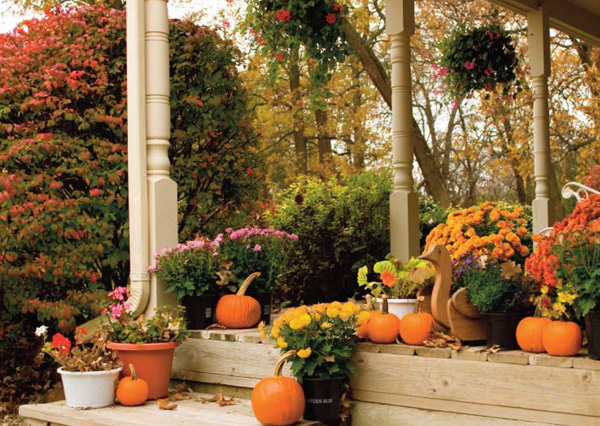 Great Fall Flower Garden Ideas